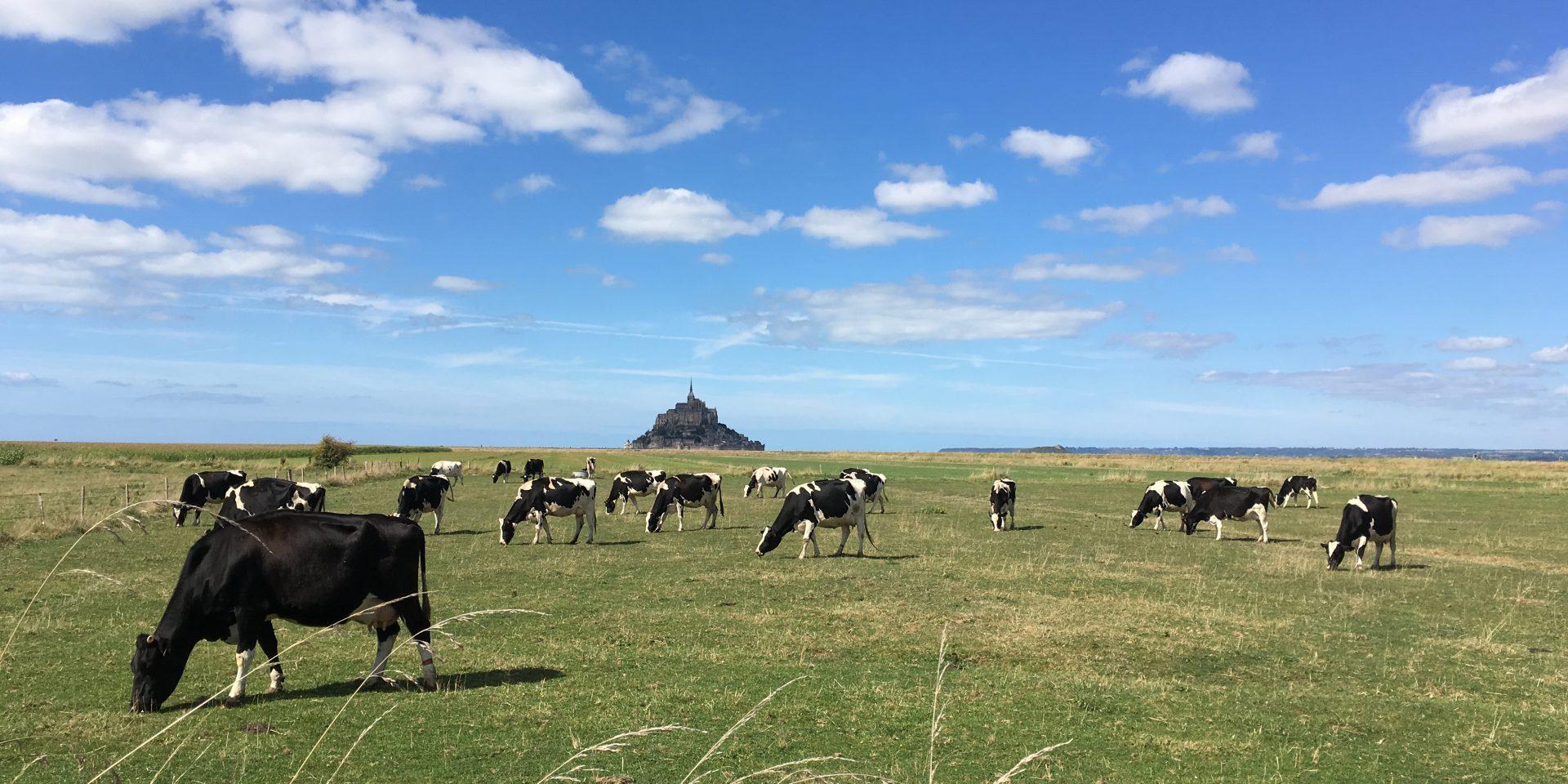 Tourisme en Normandie : le mont Saint Michel