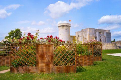Château de Guillaume Le Conquérant à Falaise