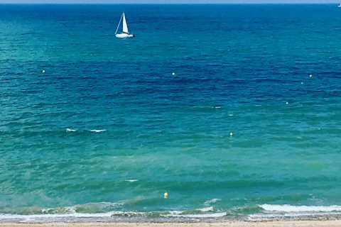 Newsletter 1 Hôtel Outre-Mer (Villa Le Couchant) : on vous emmène en voyage... depuis chez vous !