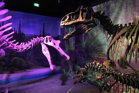 Paléospace de Villers sur Mer : musée sur les dinosaures et la Normandie jurassique
