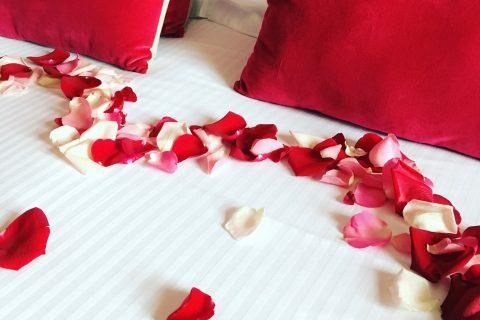 Hôtel Outre-Mer (Villa Le Couchant) - Séjour romantique Chambre confort Balade sur la Côte Fleurie