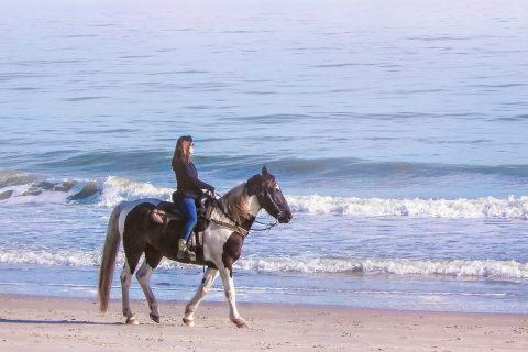 Faire du cheval à Villers sur Mer : centre équestre